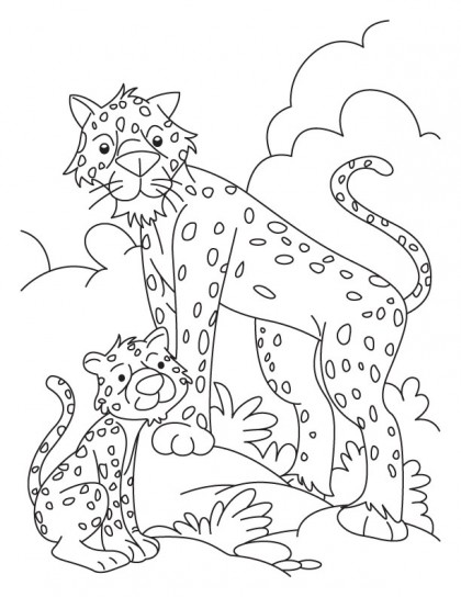 Cheetah and Cub coloring pages
