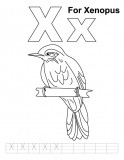 Xiphias Coloring Page Letter Xx printable co...