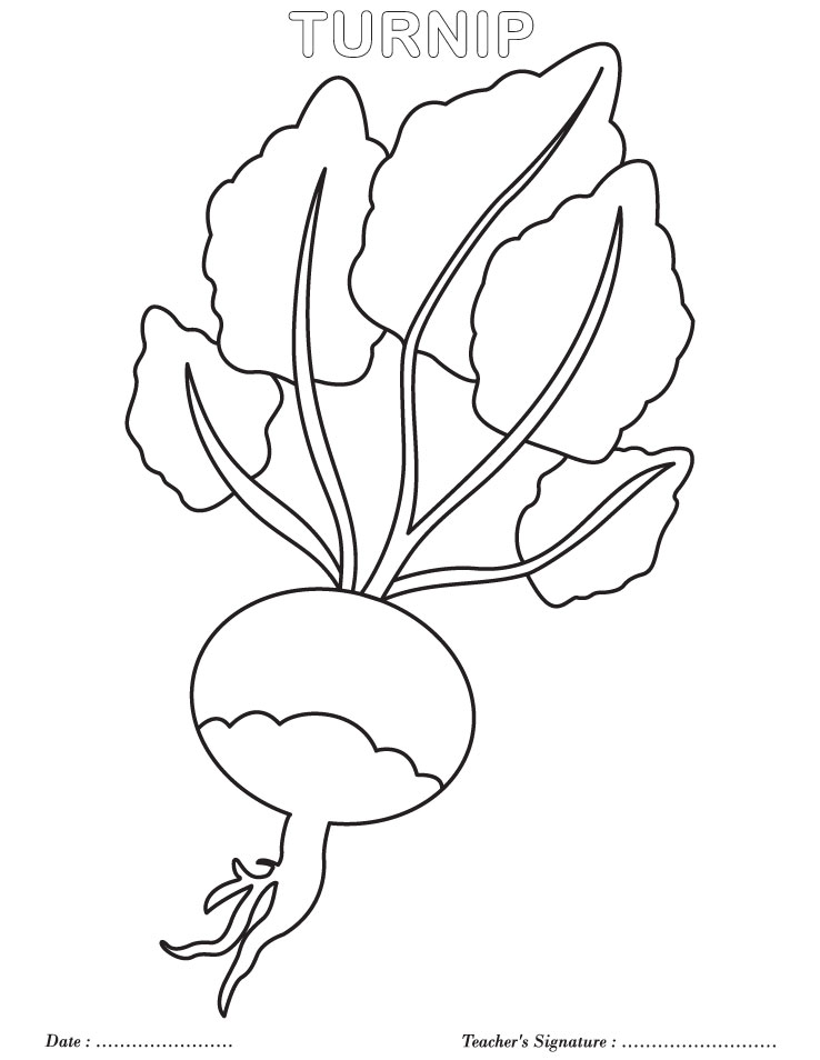 Turnip Coloring Page