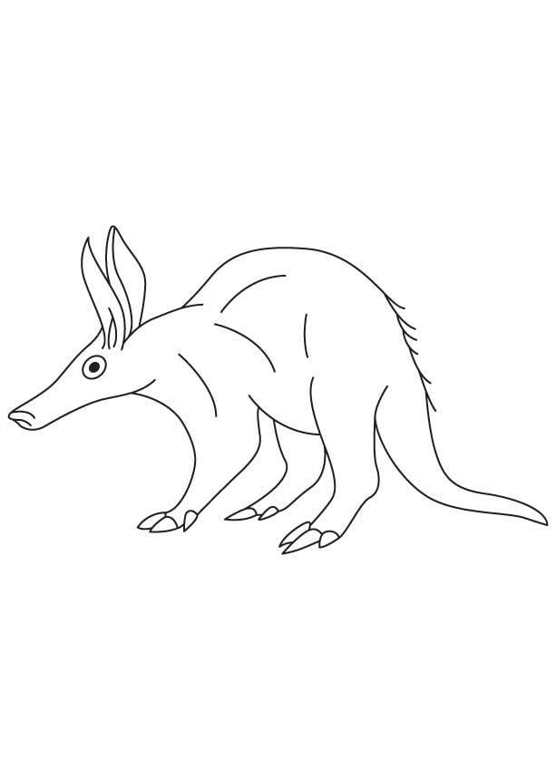 Aardvark Coloring Sheet