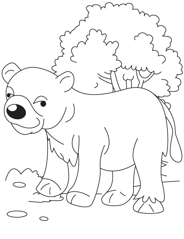 Bear cub in jungle coloring page