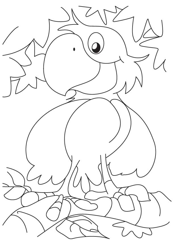 A cute happy parrot coloring page
