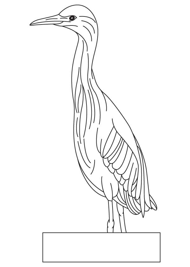 A small bird coloring page