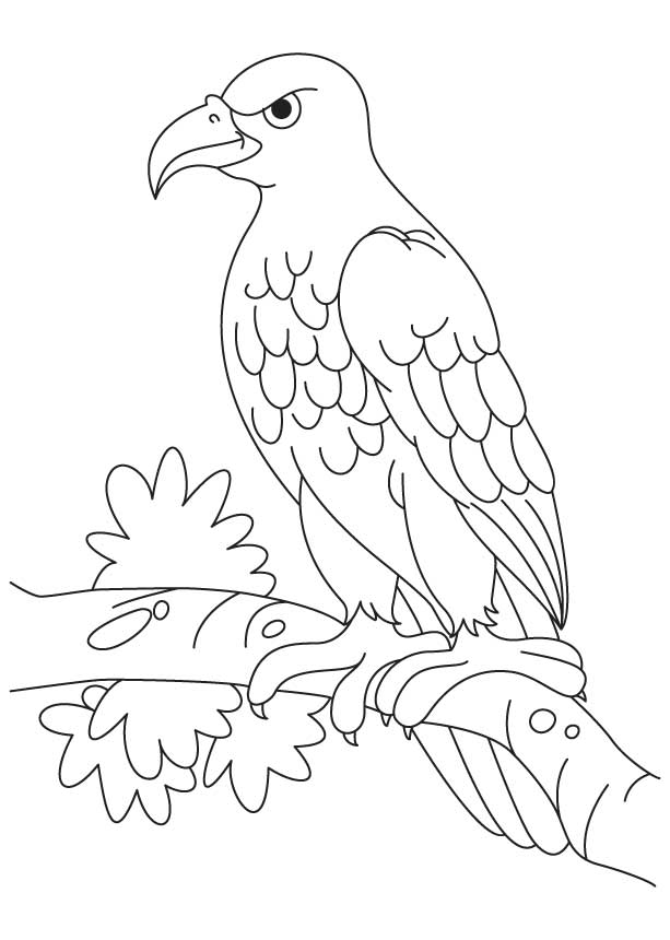 An angry eagle sitting coloring page Download Free An
