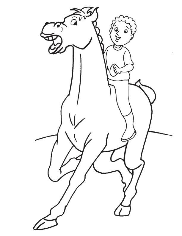 Beautiful Arabian horse coloring page