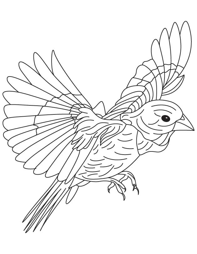 Black crow coloring page for Flying crow coloring page