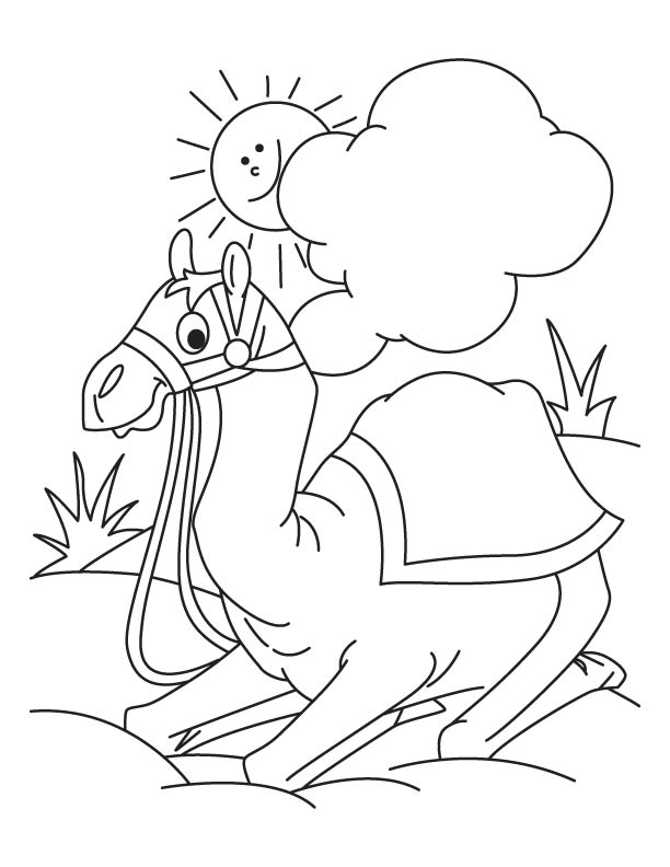 Camel sitting in the desert coloring page