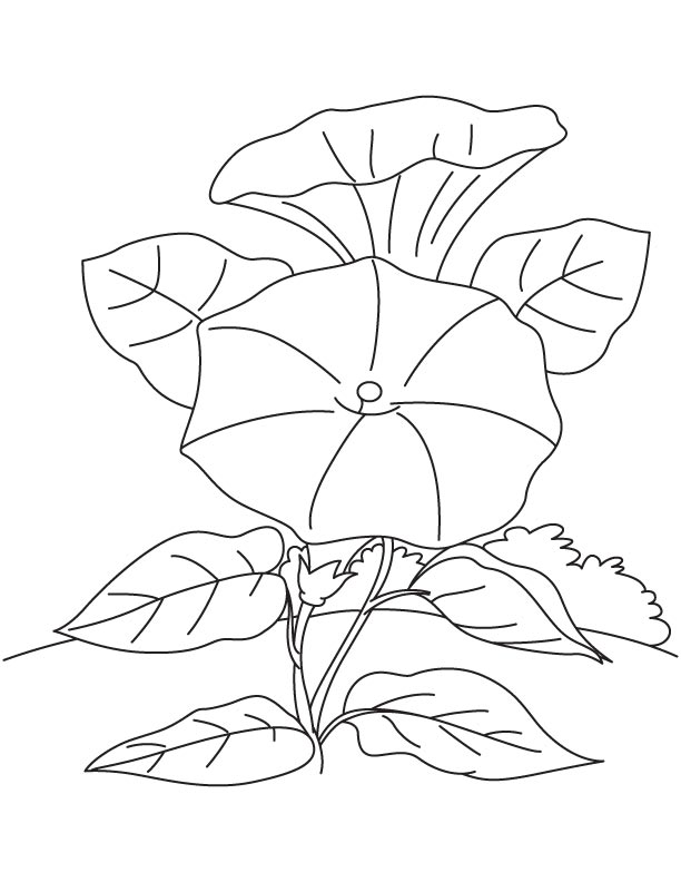A Sunflower Field With Lilies And Butterflies Coloring Page