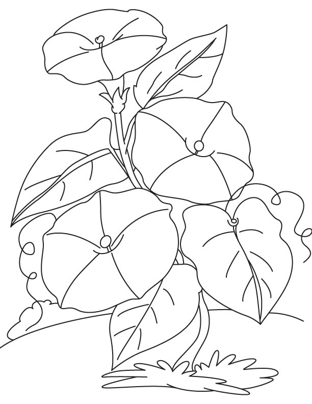 climbing flowers coloring page