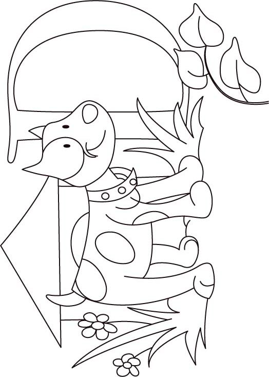 d for dog coloring pages - photo #49