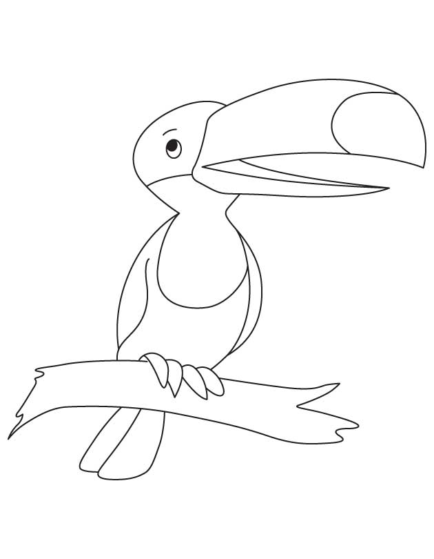 Fruit Eating Toucan Coloring Page