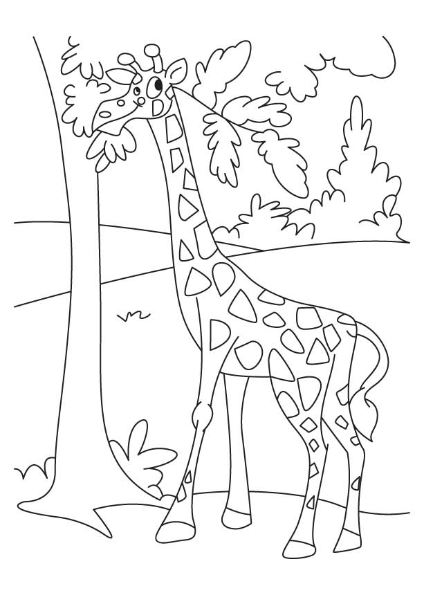 Shapes Teaching Worksheet For Preschool And Kindergarten in addition Giraffe Enjoying Leaves additionally Fresh Baked Tortilla Chips as well The Zoo Minibook Sheet Pg   X Q together with Scarecrow Printable X. on seasons worksheets printable