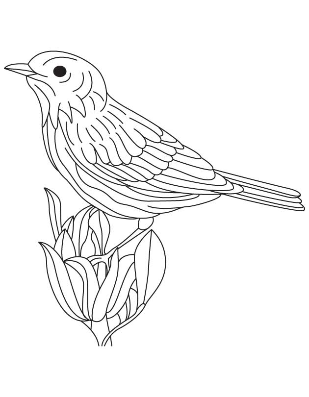 coloring pages goldfinch - photo#22