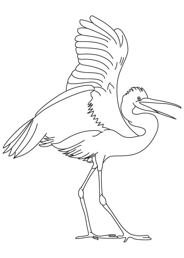 Flying Crane Bird Outline Coloring Pages Crane Bird