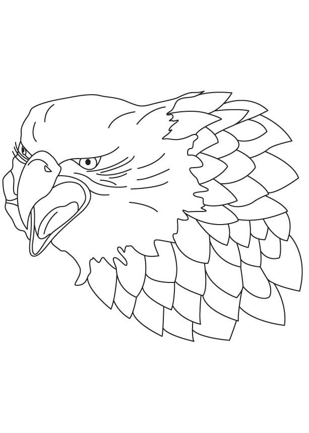 Head Of Falcon Coloring Page