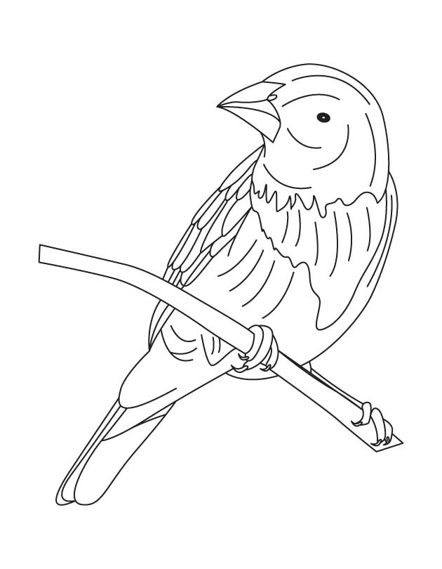african american inventors coloring pages - photo#29