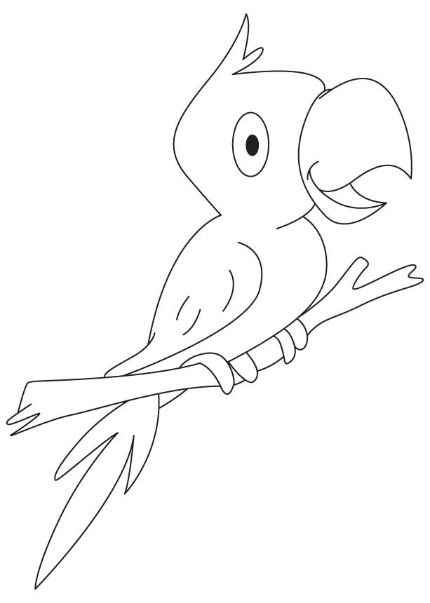 Indian parrot coloring page
