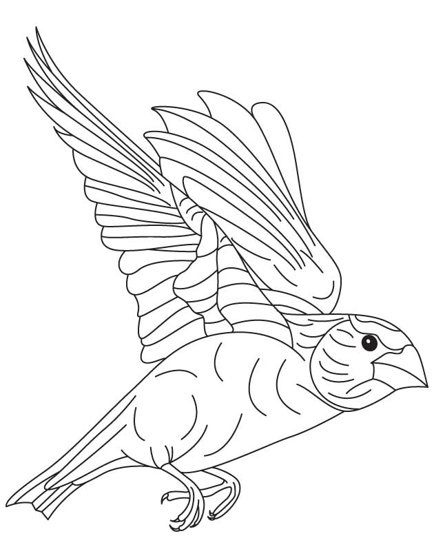 Japanese bird coloring page