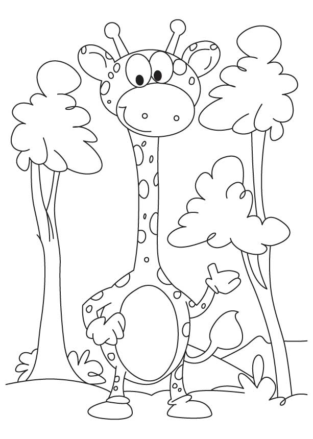 Little giraffe coloring page Download Free Little