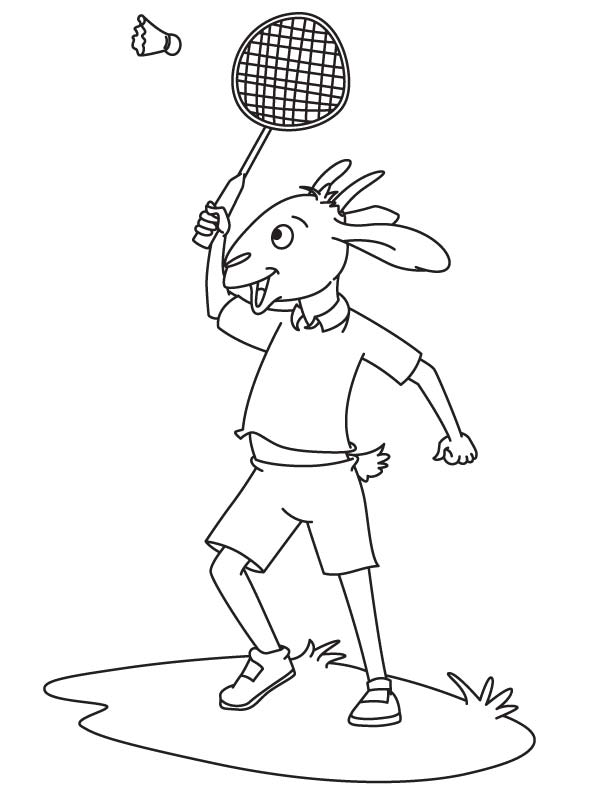 Pygmy goat coloring page