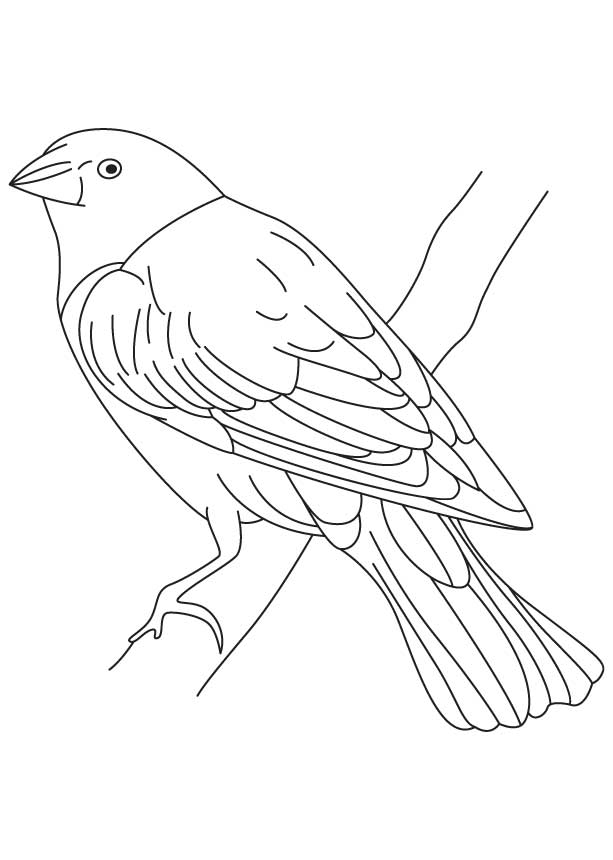 tree rex free coloring pages