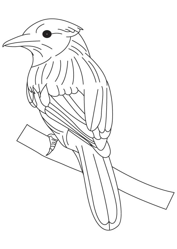 Singing bluebird coloring page