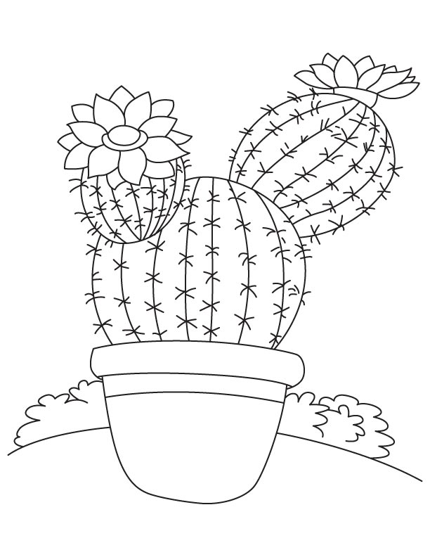 Tall tree like cactus coloring page Download Free Tall tree like