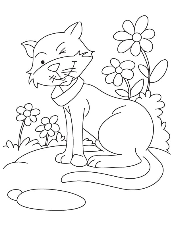 Twinkle Twinkle happy cat coloring pages