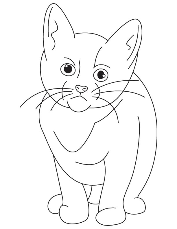 Very sad kitten coloring page