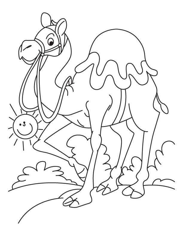 Walking arabian camel coloring page Download Free Walking