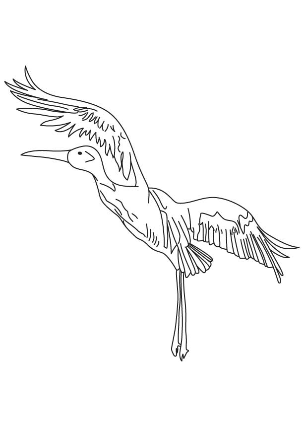 Whooping crane coloring page