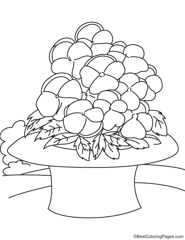 Yellow pansies in hat coloring page