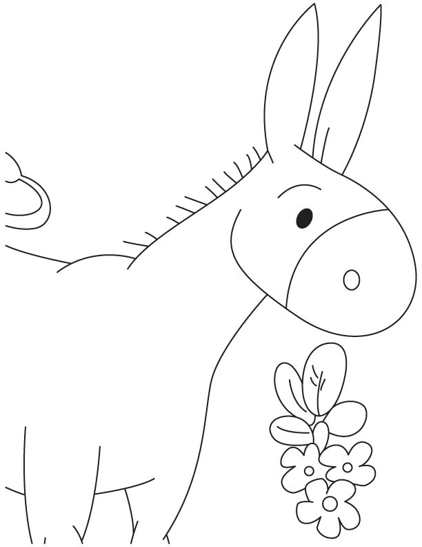 colt printable coloring pages - photo #47
