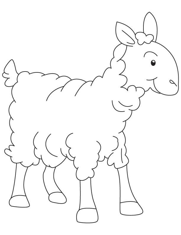 A lambkin coloring page