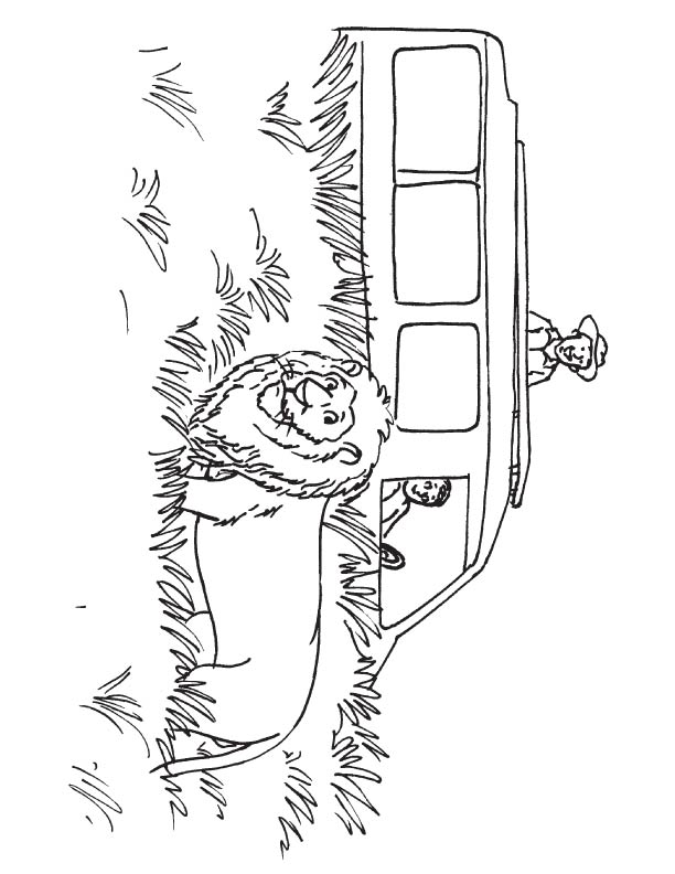 African safari coloring page