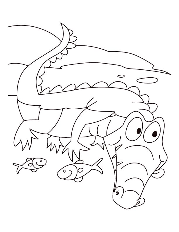 Alligator motto-Live n let live coloring pages | Download ...