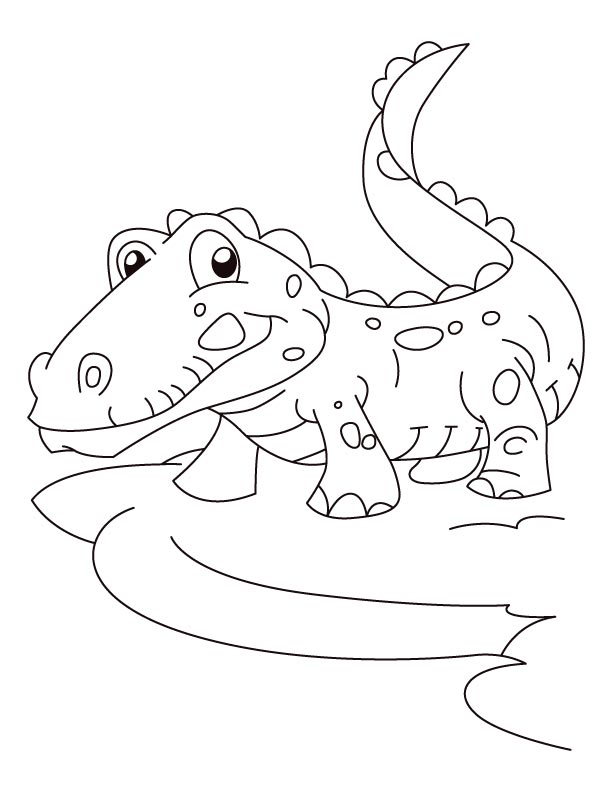 Joyful alligator coloring pages  Download Free Joyful alligator