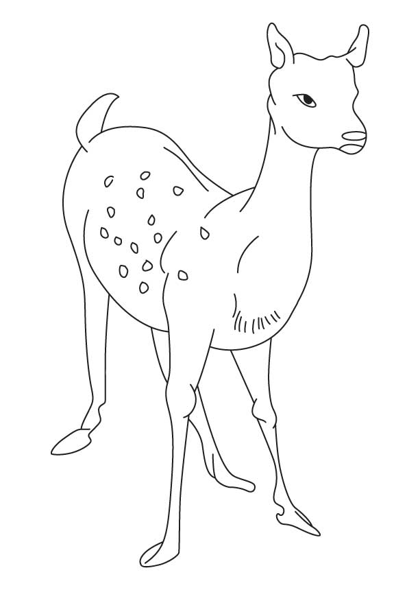 Alone deer coloring page