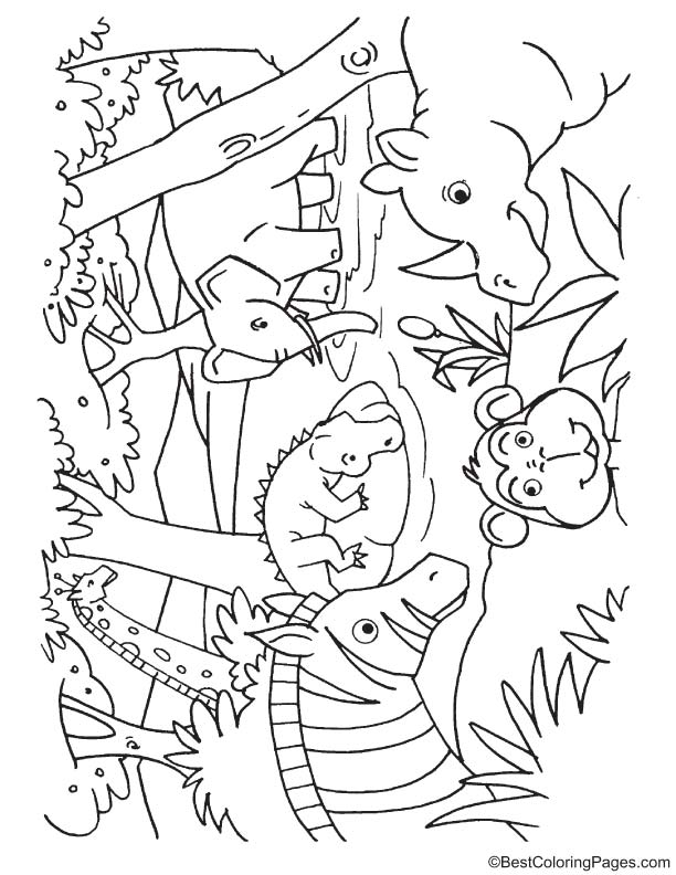 animals drinking water coloring page download free animals