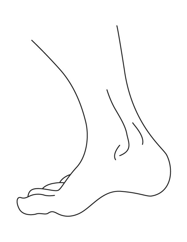 Ankle coloring page printable