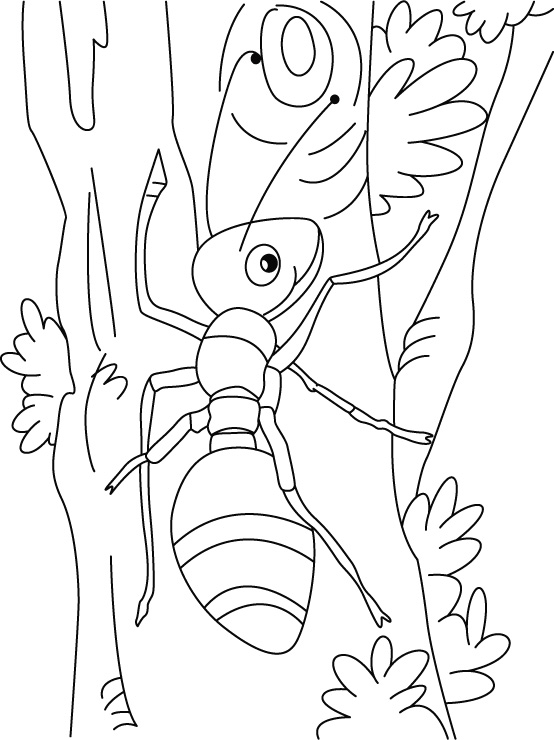 Ant climbing art coloring pages Download Free Ant climbing art