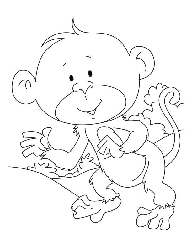 Cute Gorilla | 792x612