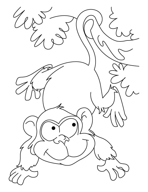 ape coloring pages printable - photo#25