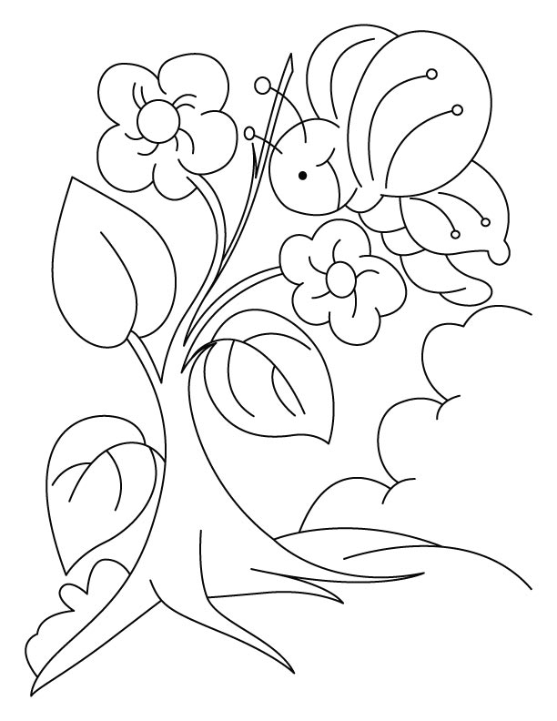 Butterfly also celebrating an arbor day coloring pages