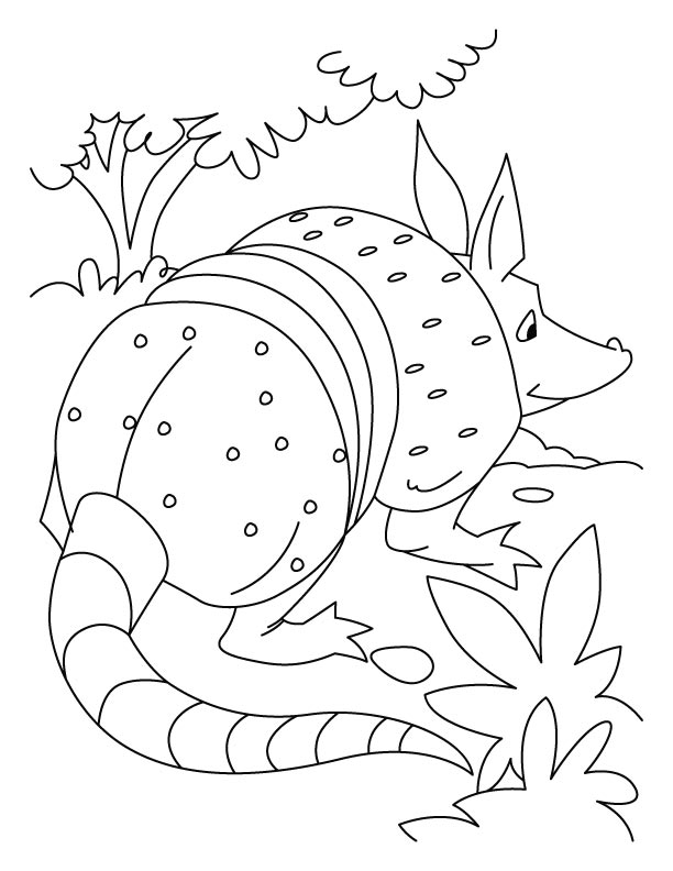 Armadillo playing role of rat coloring pages