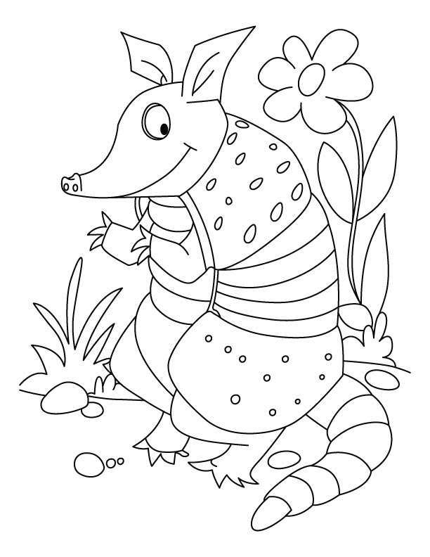 The chuimui armadillo coloring pages