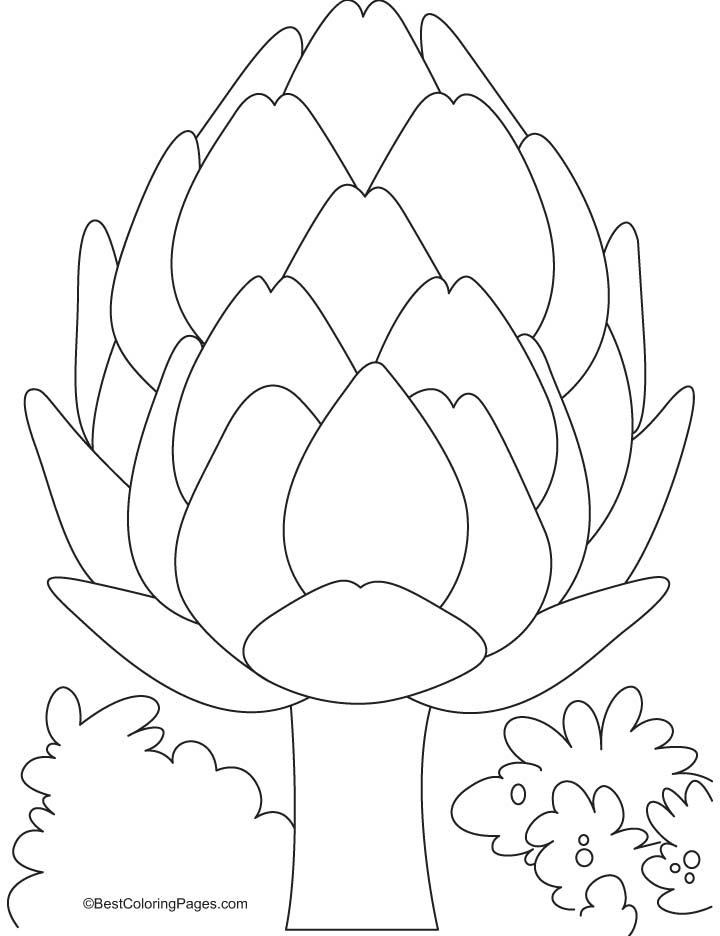 An artichoke coloring pages