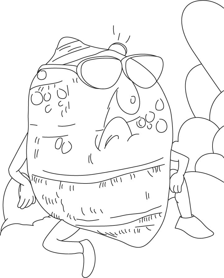 Arums coloring pages