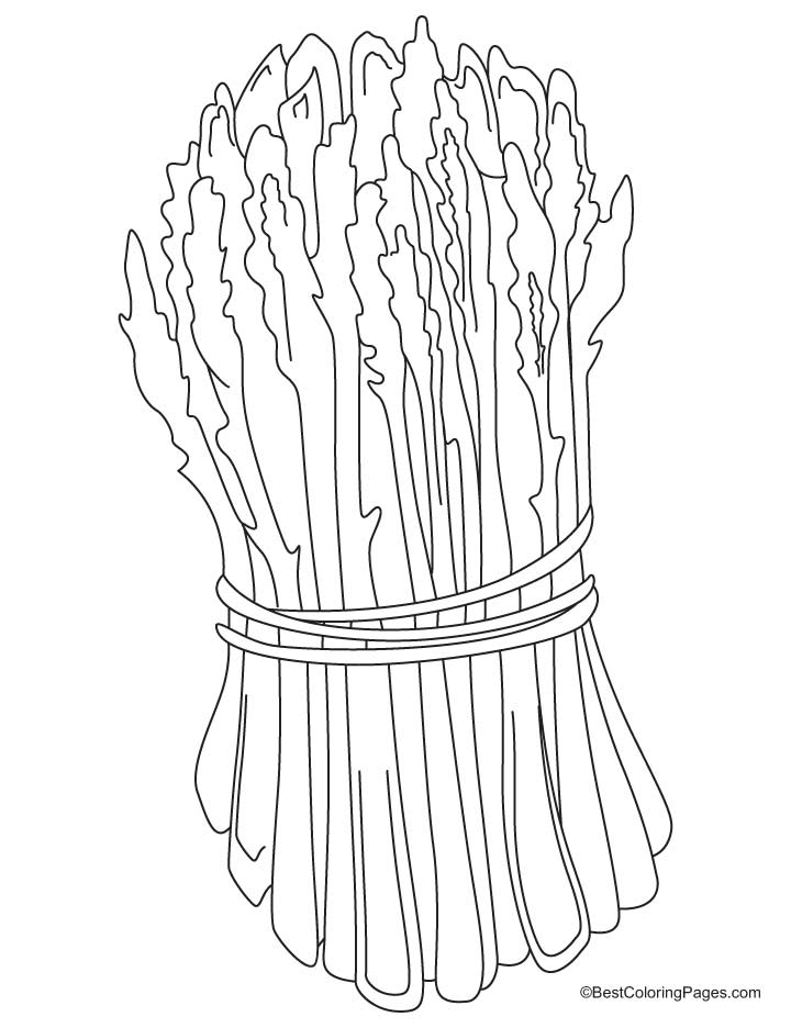 Green asparagus coloring pages