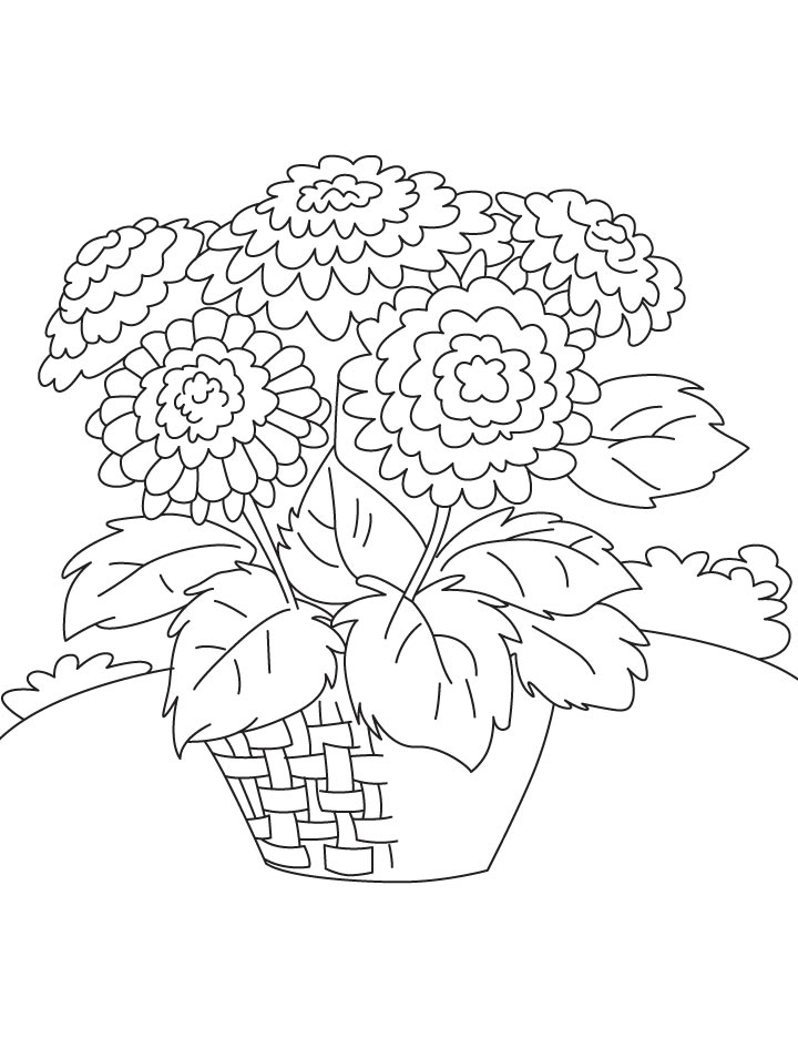 Basket of chrysanthemum coloring page Download Free